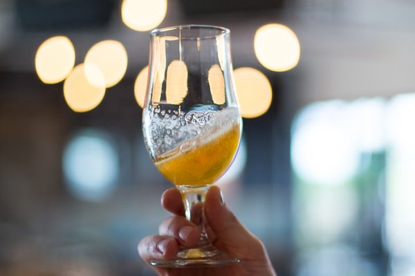 Brouhaha Brewery Craft Beer Sunshine Coast